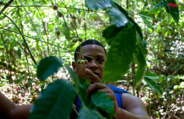 Explaining about flora in Damajagua Waterfalls forest