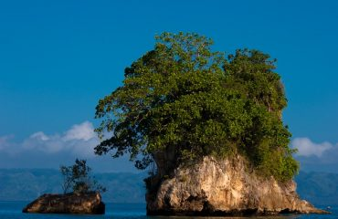 Los Haitises National Park Tour (4)