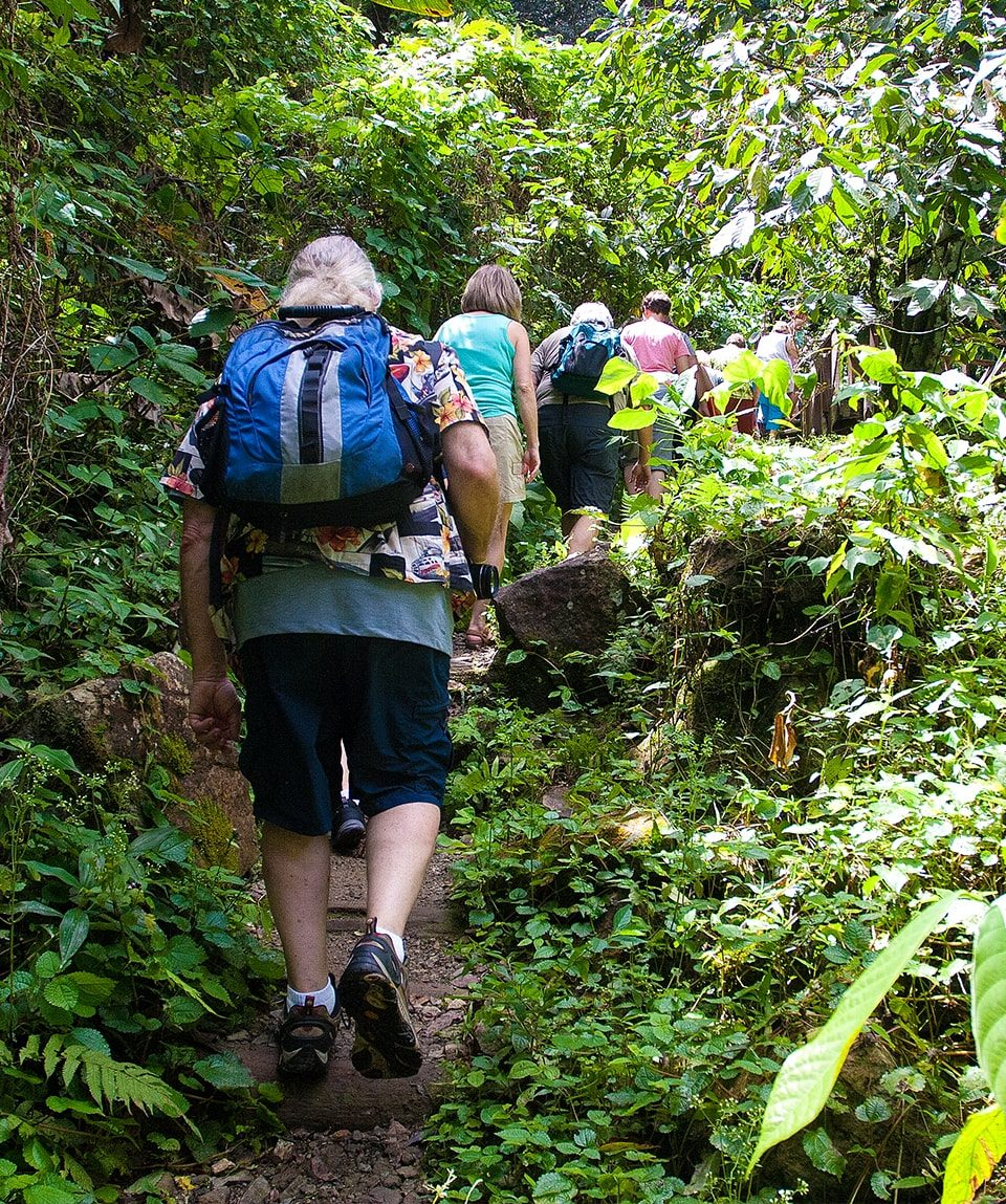 A group hiking the beautiful trail to Jima Waterfalls